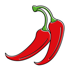 spicy chile vegetable icon vector image