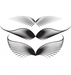wing graphics vector image
