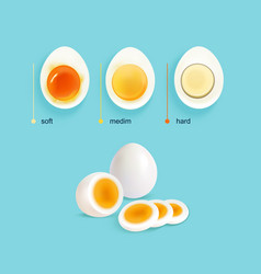 Boiled eggs stages set vector