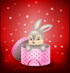 Cartoon bunny in a gift box vector