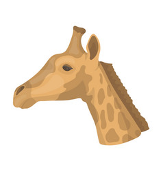 giraffe icon in cartoon style isolated on white vector image