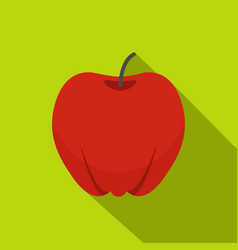 red ripe apple icon flat style vector image