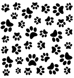 animal pattern of paw footprint vector image vector image