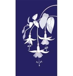 branch of fuchsia vector image