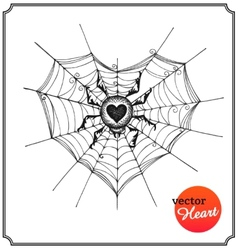 Spider and web in form of heart vector
