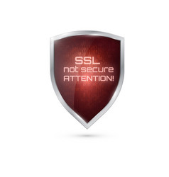 Warning icon ssl connection not secure vector