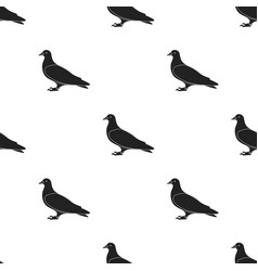 Pigeon icon in black style isolated on white vector