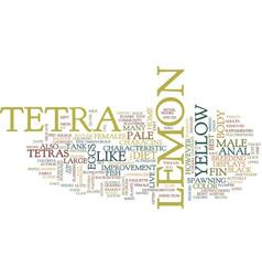 Lemon tetras text background word cloud concept vector