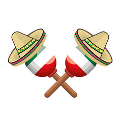 Pair mexican maraca instrument with traditional vector