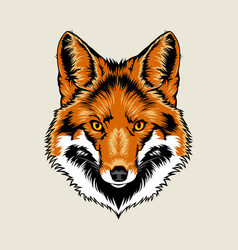 Red Fox Head vector image vector image