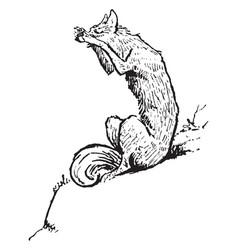 Reynard the fox shouting to bruin vintage vector