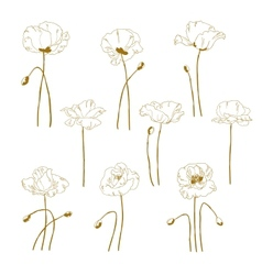 Set of one-colored outlined poppy vector