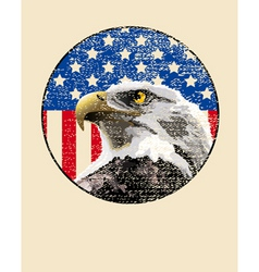 bald eagle American flag vector image