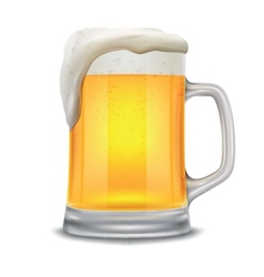 beer glass mug vector image vector image