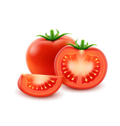 Big ripe red cut whole tomato close up vector