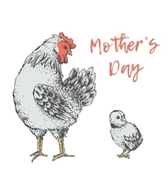 Vintage design with hen Mothers days vector image
