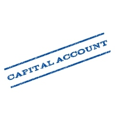 Capital account watermark stamp vector
