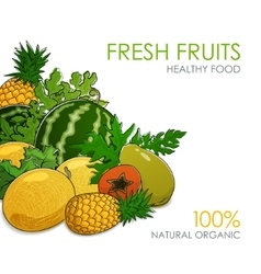 Juicy tropical fruits and berries vector