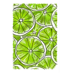 slices of lime vector image