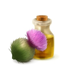 Burdock oil natural cosmetics vector image