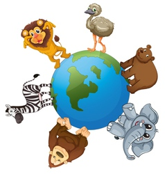 Animals around the world vector image