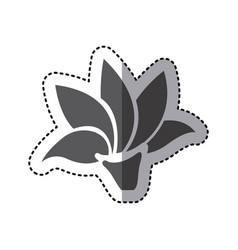 contour rose with pointed petals icon vector image