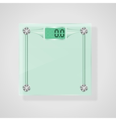 Transparent Glass Scales  eps10 vector image