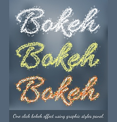Bokeh Graphic Styles vector image