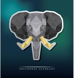 Elephant low poly vector