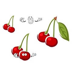 Red cherry fruits cartoon character vector image