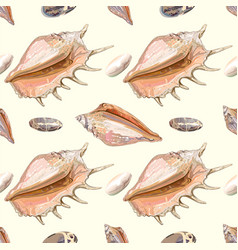 Sea shell seamless pattern vector image