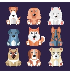 Breeds of dogs icons vector