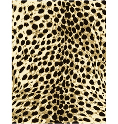 Cheetah leopard animal skin texture vector