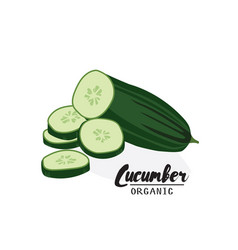 Cartoon cucumber ripe green vegetable vegetarian vector