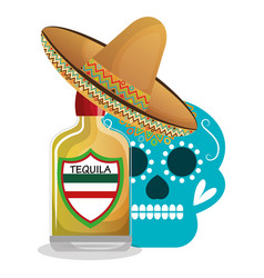 mexican tequila drink icon vector image