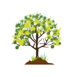 Colorful silhouette with leafy tree vector