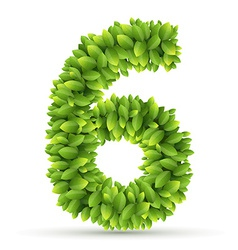 Number alphabet of green leaves vector