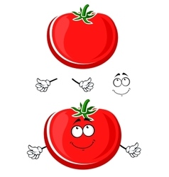 Cartoon ripe juicy red tomato vegetable vector