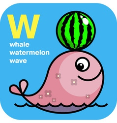 ABC whale watermelon wave vector image vector image