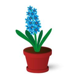 Hyacinth vector