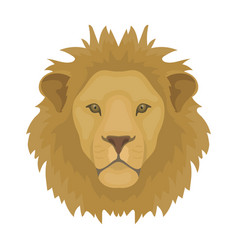 lion icon in cartoon style isolated on white vector image