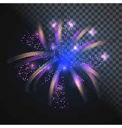 Festive blue firework with glowing sparkles vector