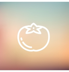 Tomato thin line icon vector