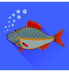 Fish With Red Fins vector image