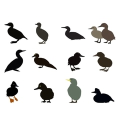Set of Silhouettes of different types of existing vector image