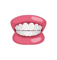 Demonstration jaw and teeth prop vector