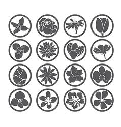 flowers five vector image