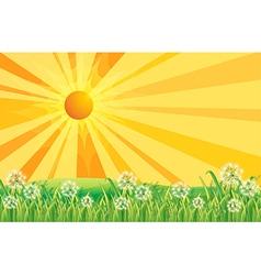 Sunshine Field vector image