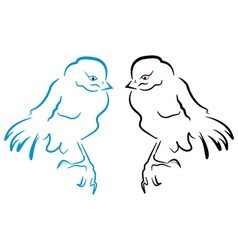 Birds sillhouette vector