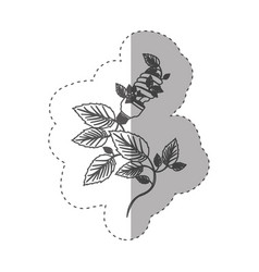 Sticker with grayscale contour with spiral vector